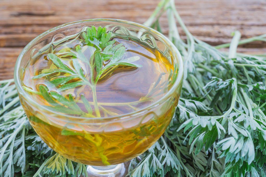 青蒿素由黄花蒿提炼而成,是著名的中草药。