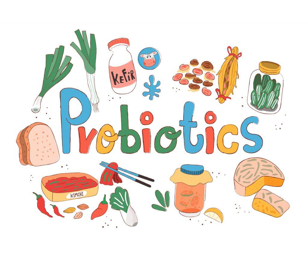 益生菌除可改善肠道问题外,亦有助身体各器官功能健康。